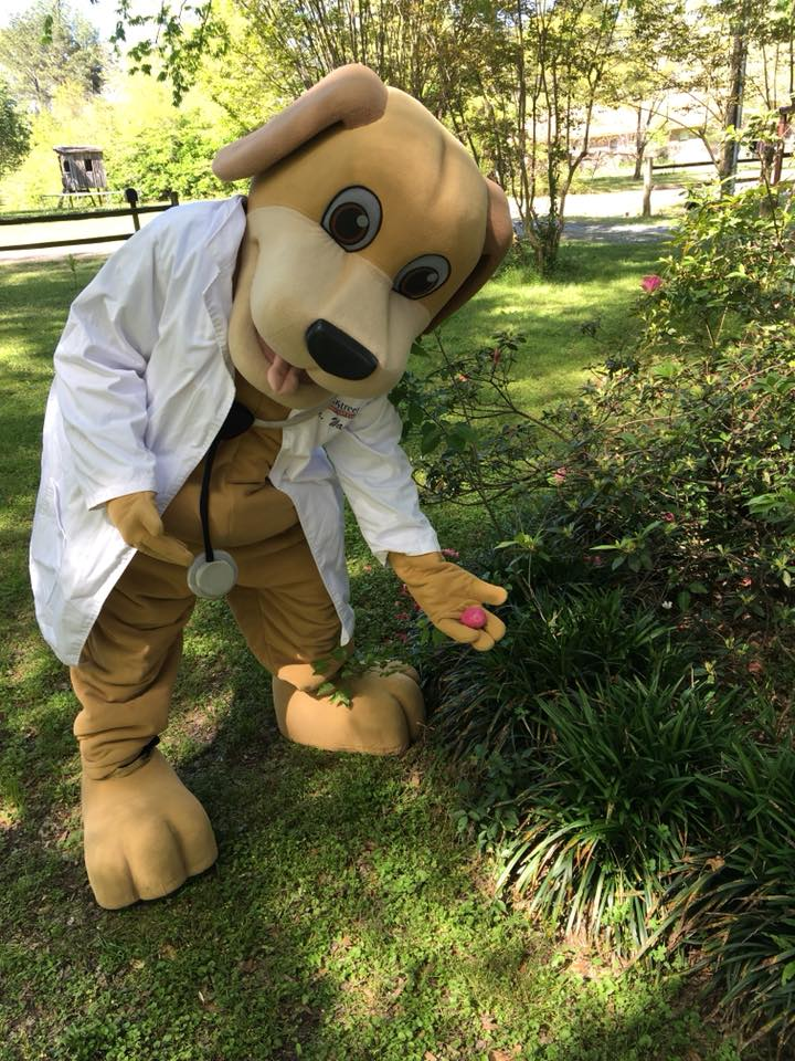 MainStreet Mascot hides Easter eggs for Southern Souls animal league Spring